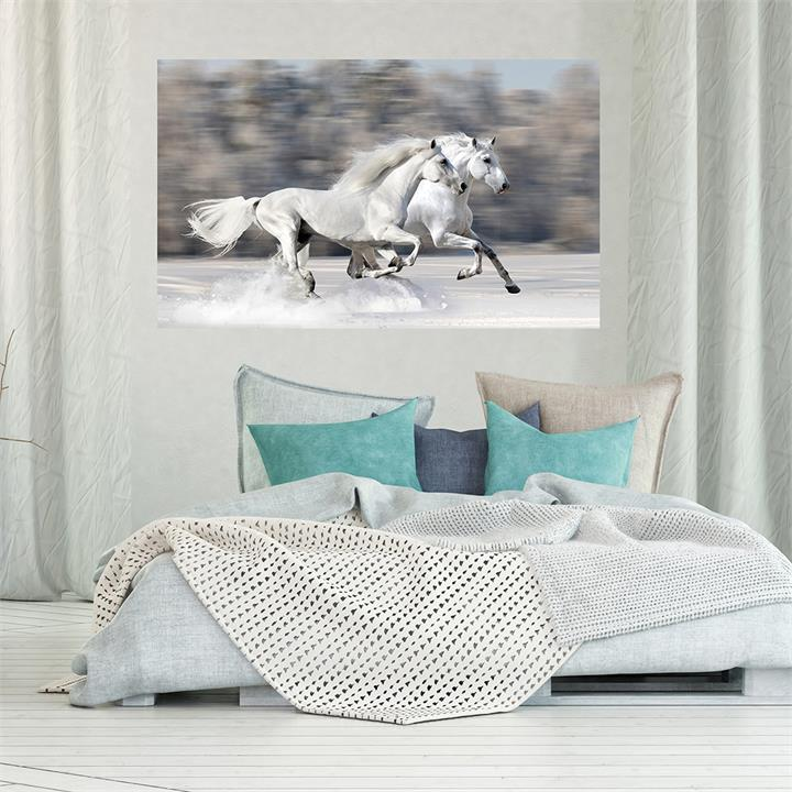 Two White Horses in the Snow | Canvas Print