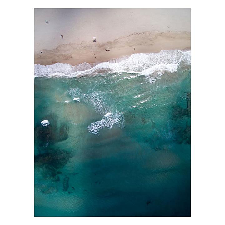 In The Deep | Canvas Print
