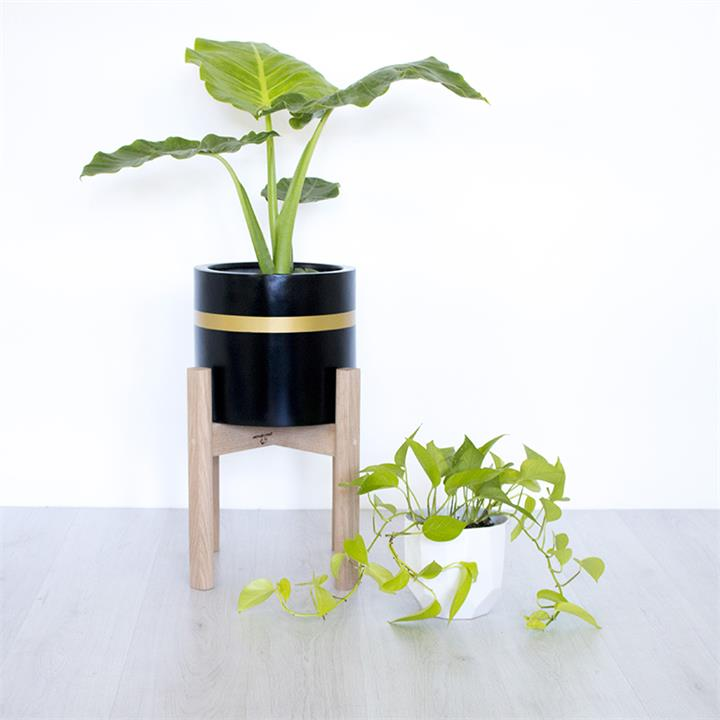 Gold Band | Indoor & Outdoor Planter Pot