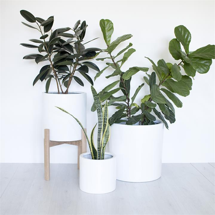 Naked | Indoor & Outdoor Planter Pot | Black or White