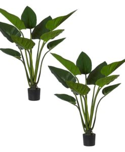 Artificial Green Kingdom Plant (Set of 2)