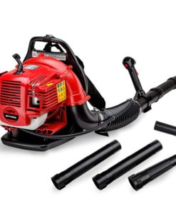 30CC Two Stroke Leaf Blower with Extension -BPX635