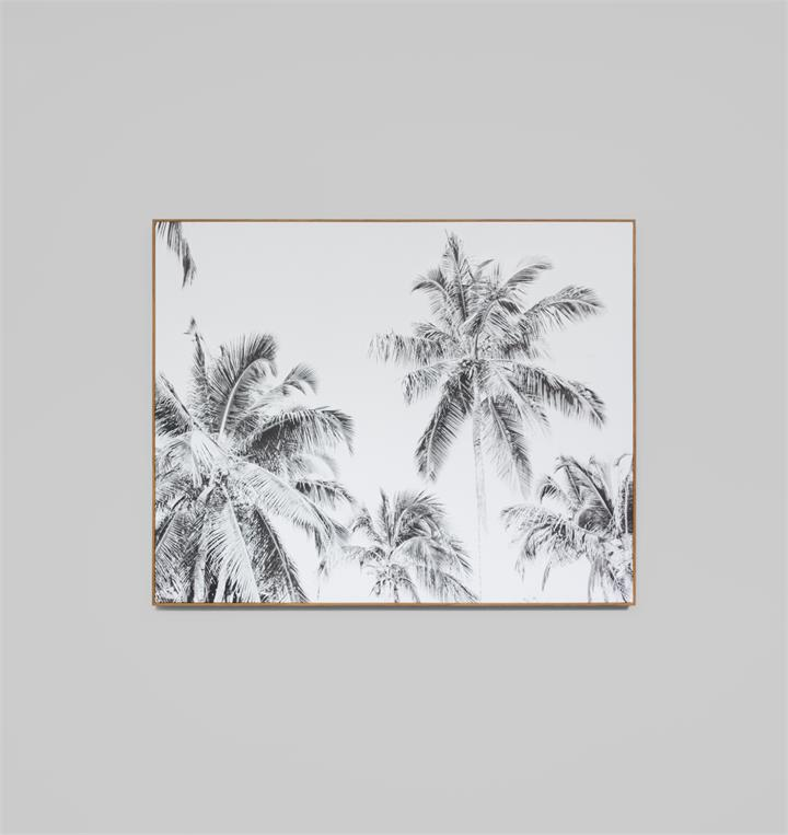 Summer Palms Grey | Framed Photographic Print