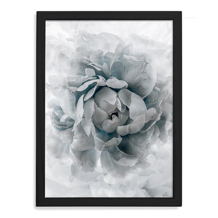 Blue Crush Peony  | Limited Edition Print | Arti Shah