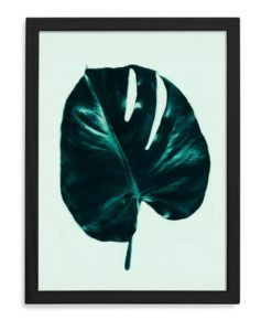 Palm Beach Monstera | Unframed Print