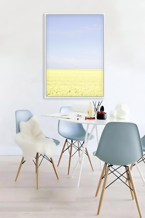 Canola Canvas Print | Framed