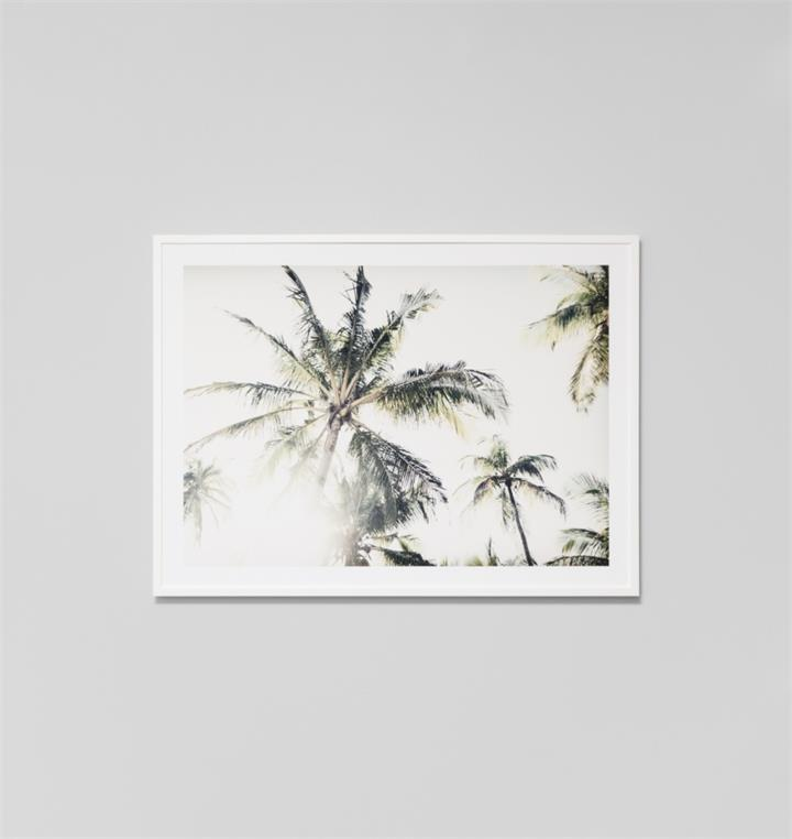 Tropical Escape | Framed Photographic Print
