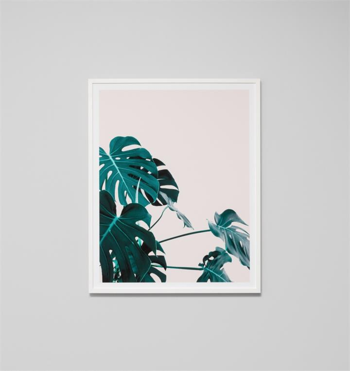 Tropical Home Blush | Framed Photographic Print