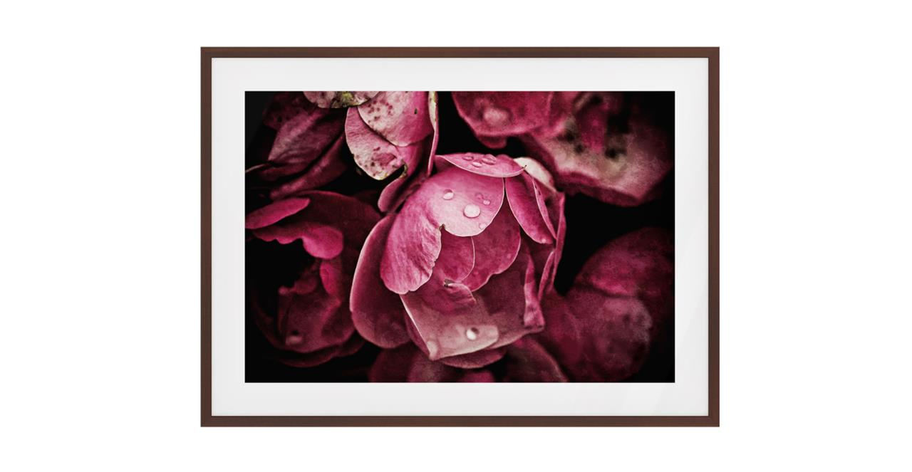 The Dew Drop Print Dark Brown Wood Frame Small
