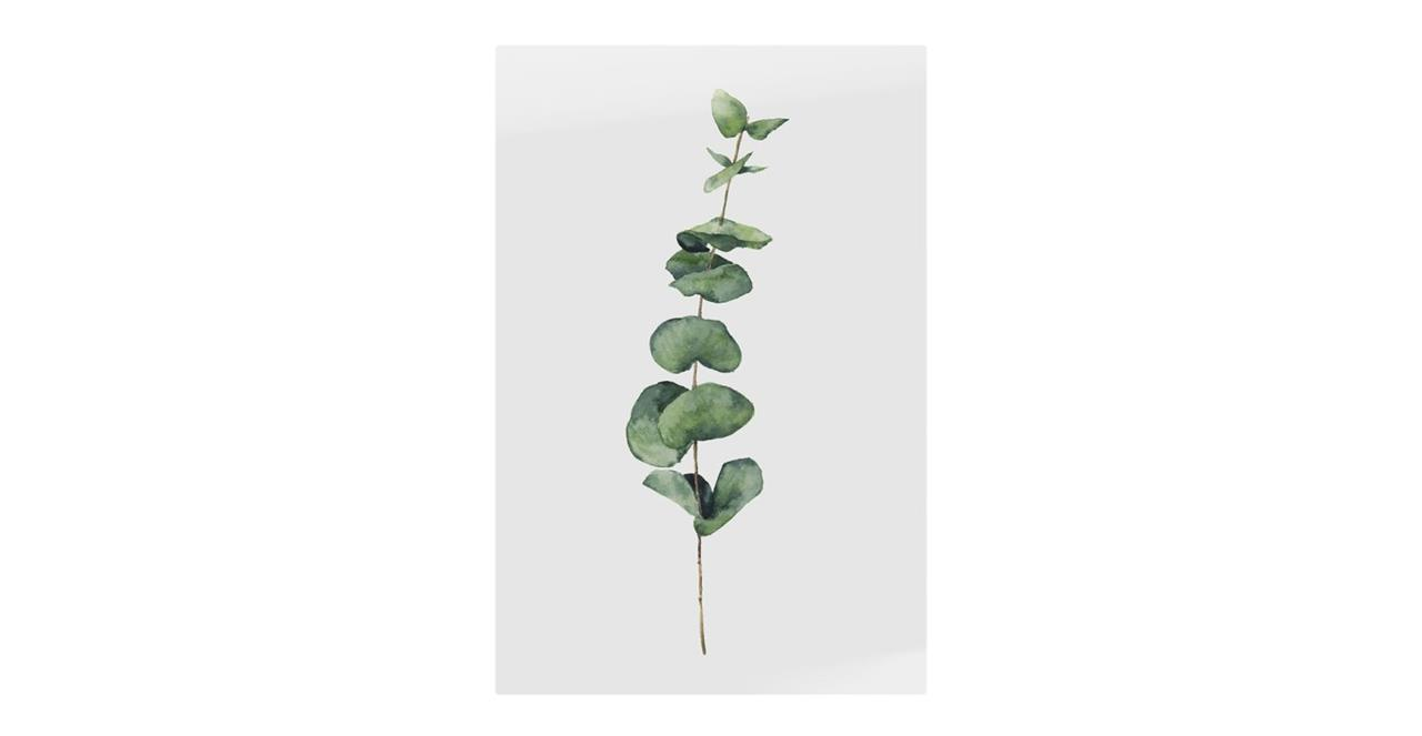 The Eucalyptus Print Metal Print Small Seeded