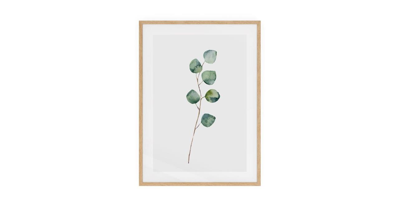 The Eucalyptus Print Natural Wood Frame Small Silver Dollar