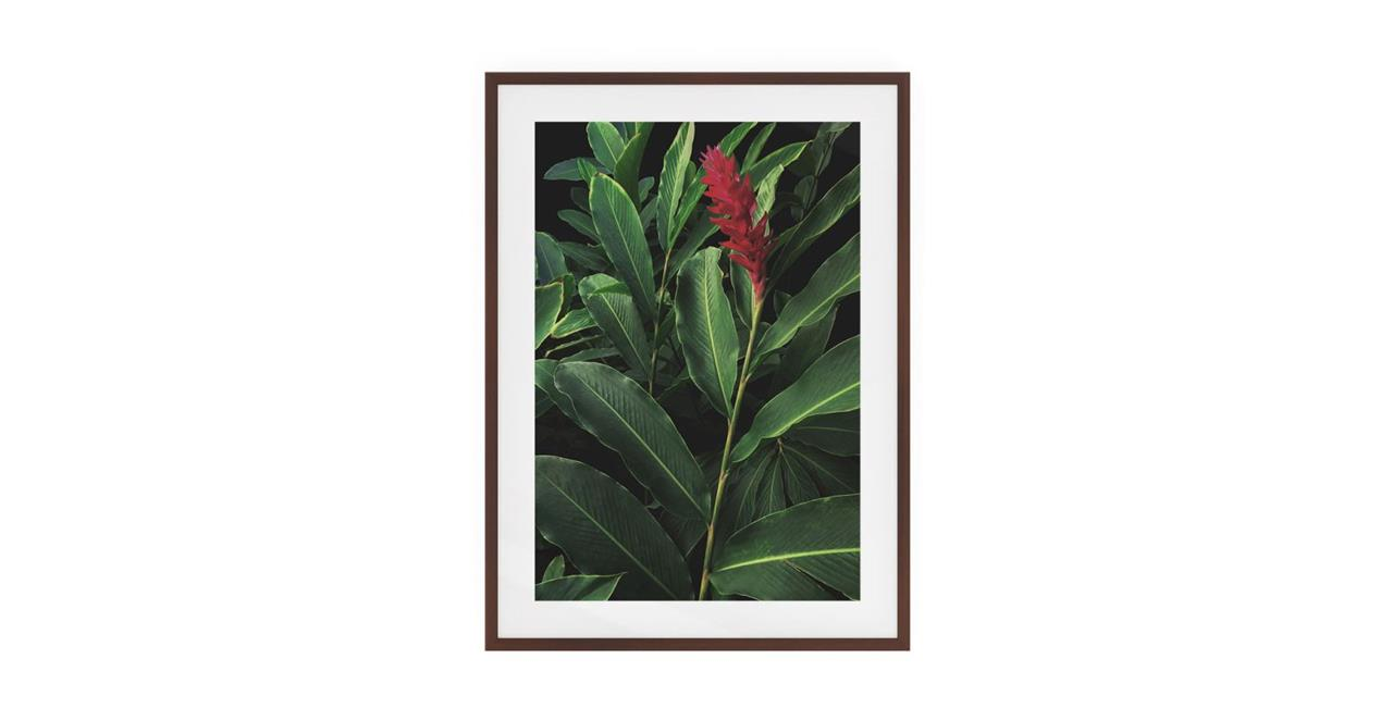 The Red Ginger Print Dark Brown Wood Frame Small