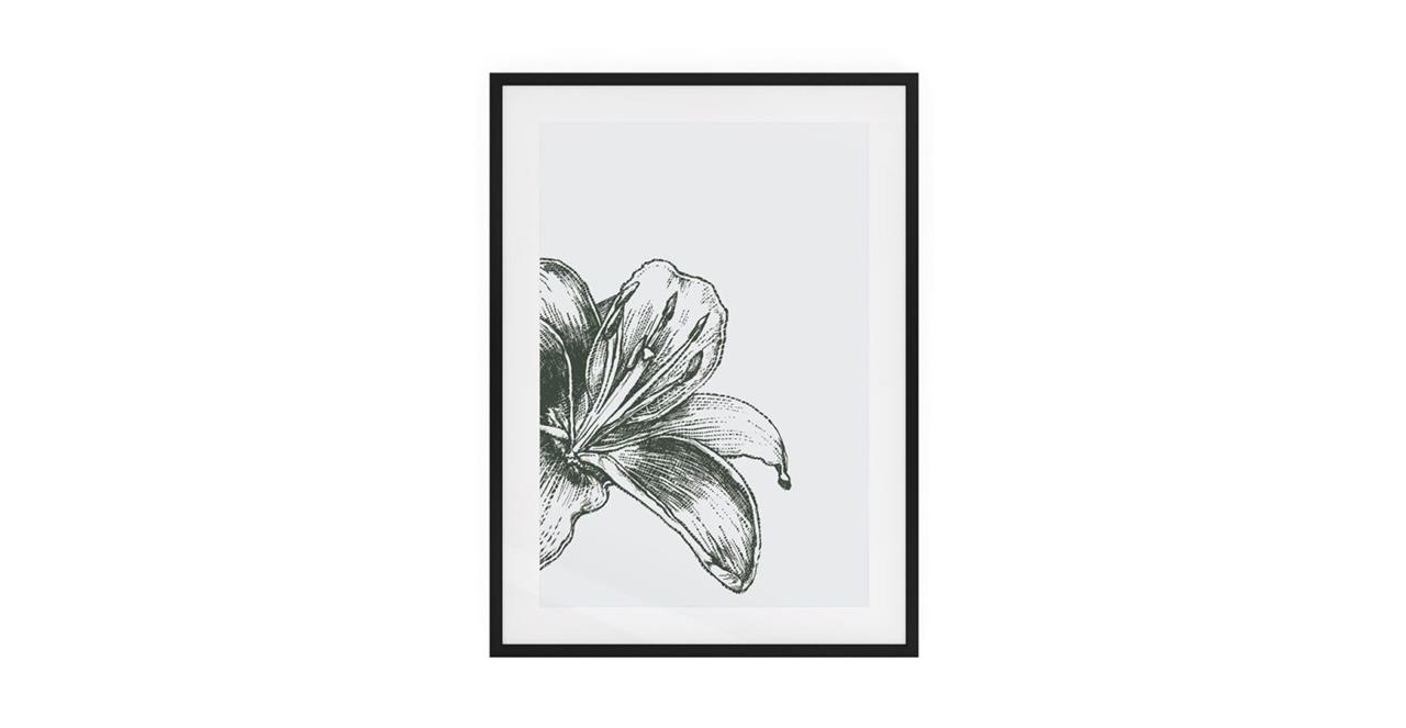 The Monochrome Print Black Wood Frame Medium Lily