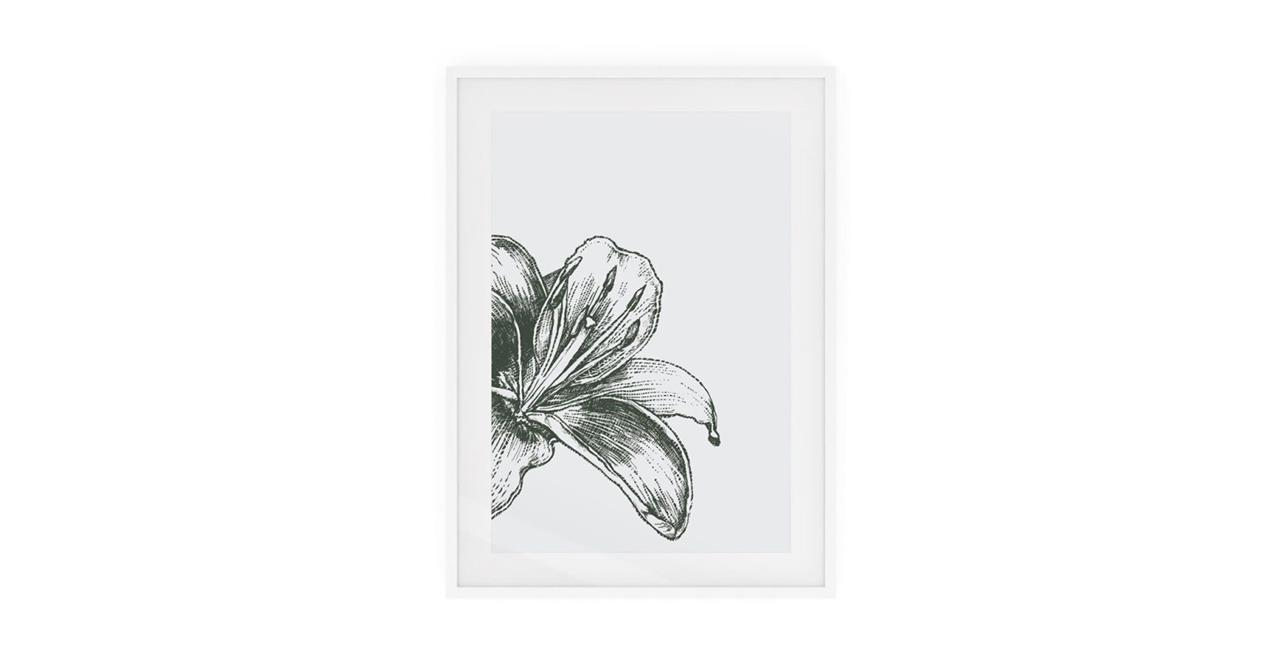 The Monochrome Print White Wood Frame Medium Lily
