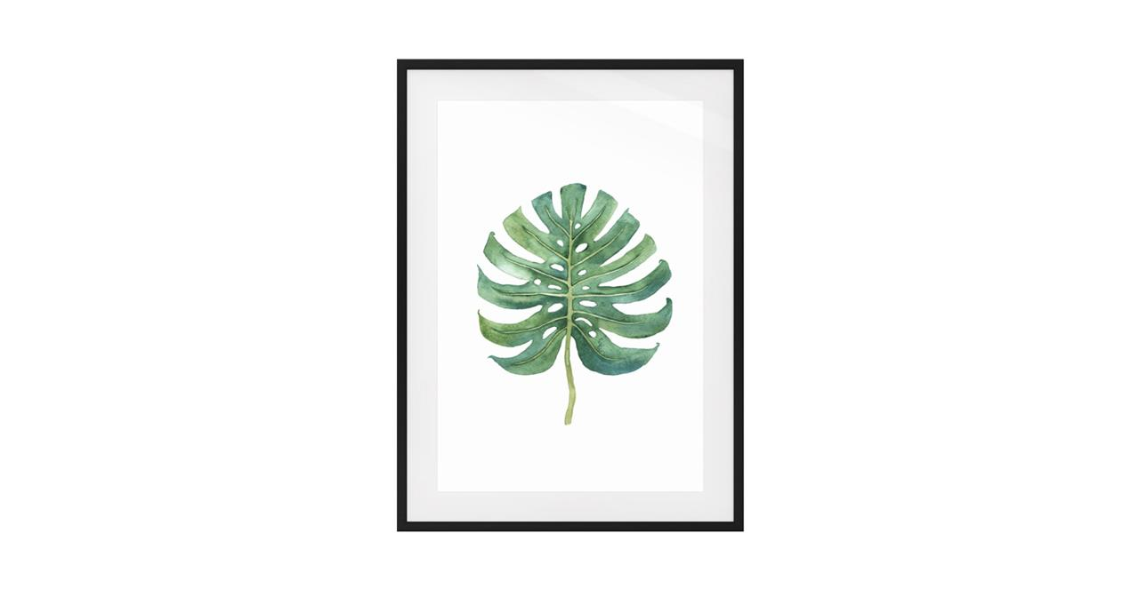 The Monstera Print Black Wood Frame Small Monstera Cloud