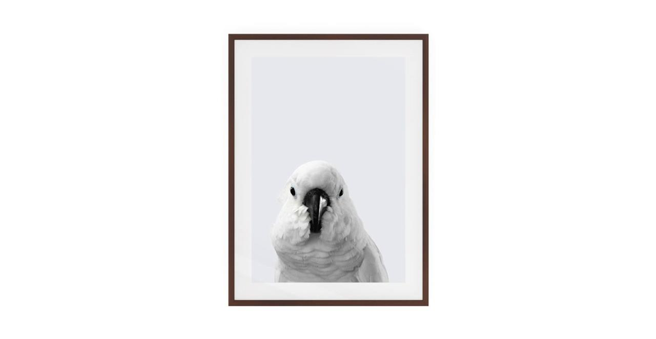 The Yellow Crested Cockatoo Print Dark Brown Wood Frame Small
