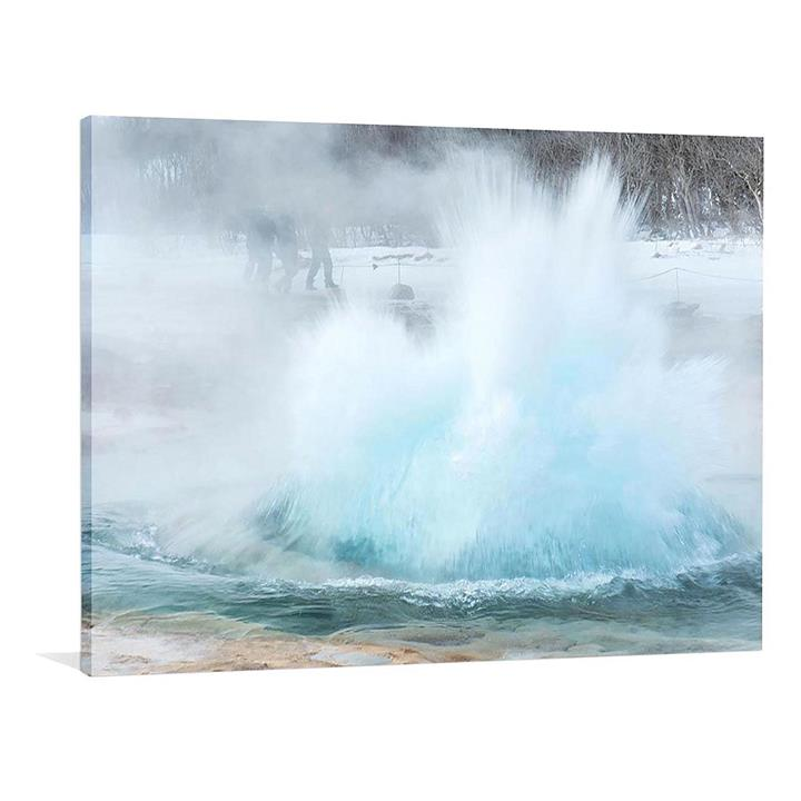 Forest Cool Canvas Print