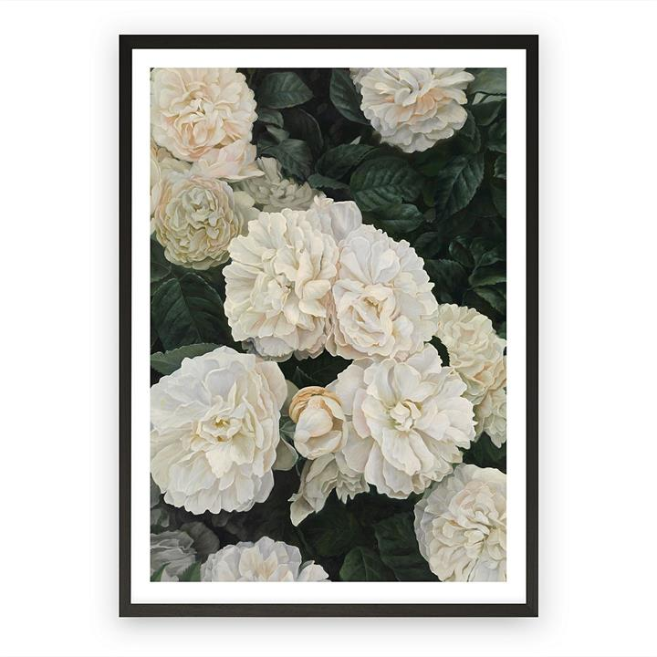 English Roses Framed Art Print