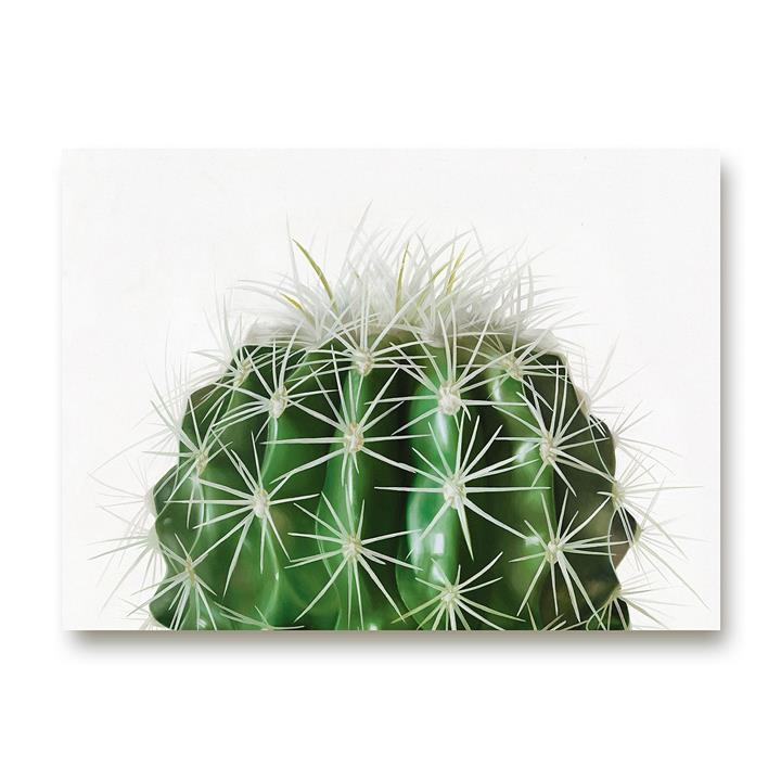 Cacti Canvas Art
