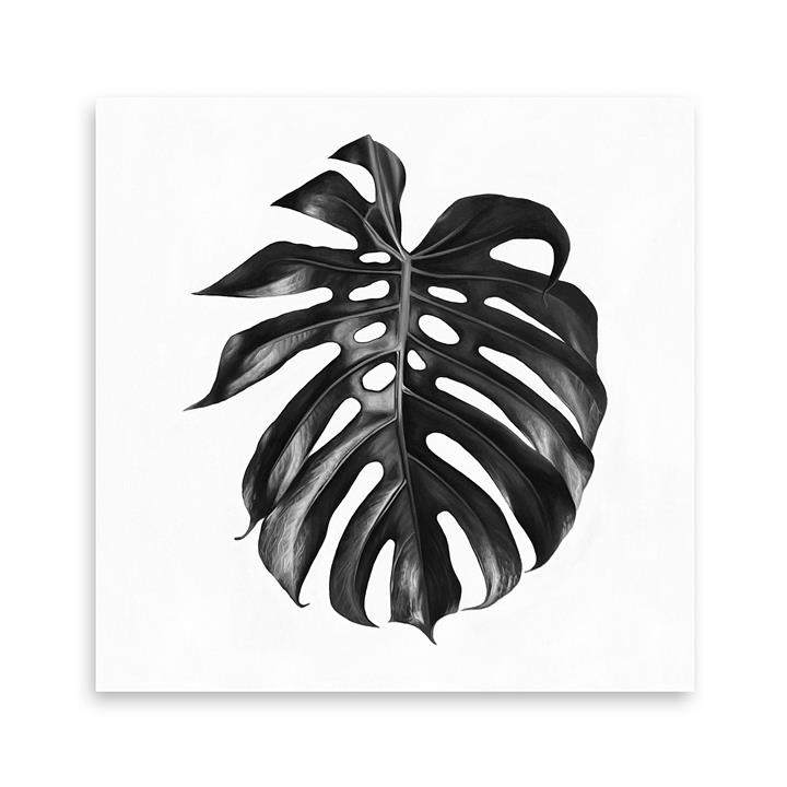 Monstera Leaf Square Canvas Art