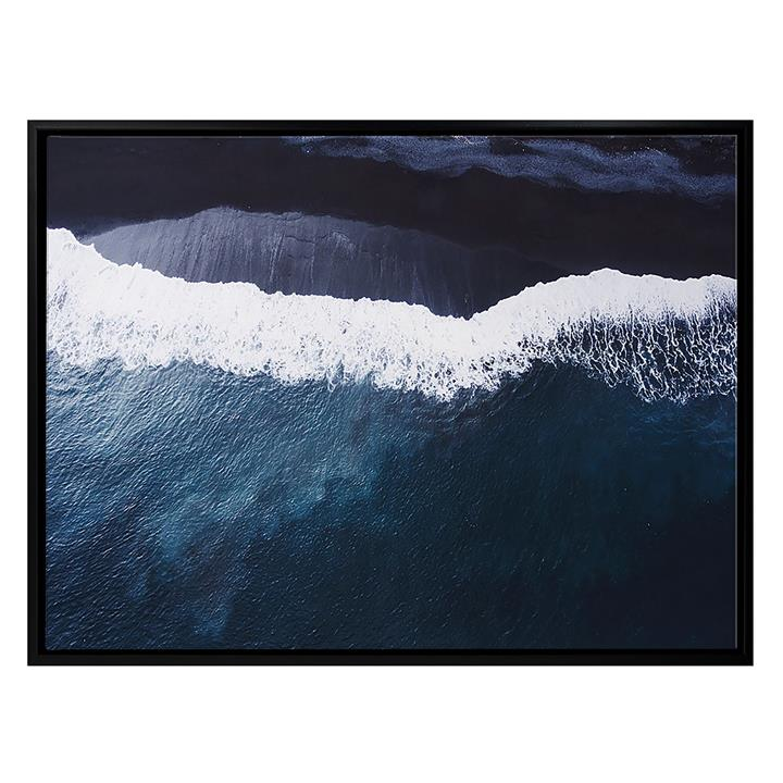 Moby Framed Canvas Print