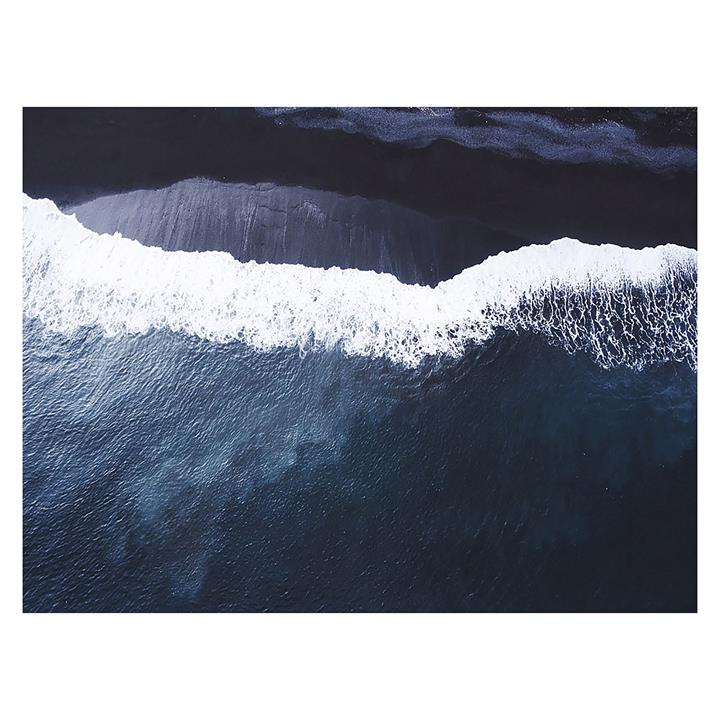 Moby Canvas Print