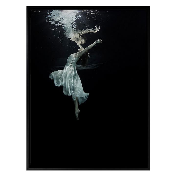 Plunge Framed Canvas Print