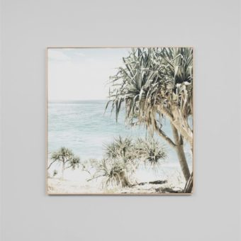 Coastal Palms | Canvas