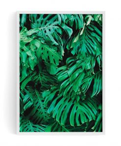 Mr Fancy Plants Monstera Print