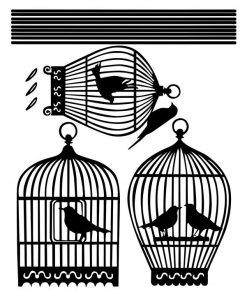Birdcages Wall Decal