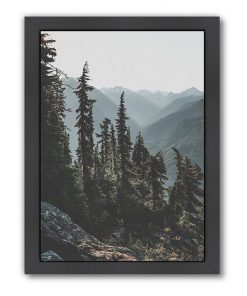 North Cascades National Forest USA Print Art