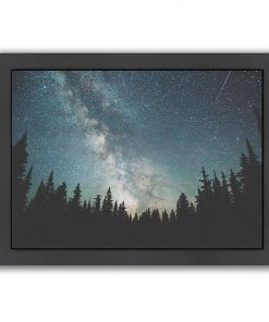Stars over the Forest III Print Art