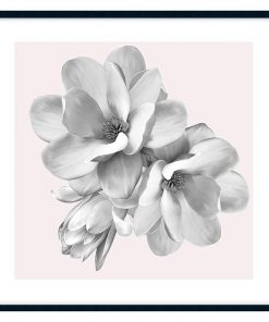 Magnolia Bloom #1 Framed Wall Art