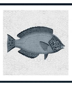 Tropical Fish Collection #2 Wall Art