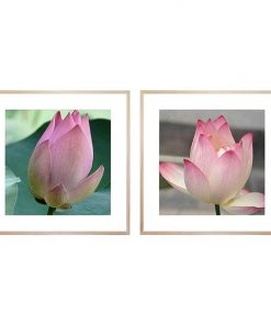 Tender Word/Tender Word II 2-Piece Framed Print