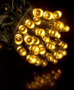 1000 Warm White Twinkle LED String Light - 50m