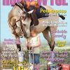 HorseWyse Magazine 12 Month Subscription