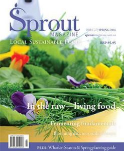 Sprout Magazine 12 Month Subscription