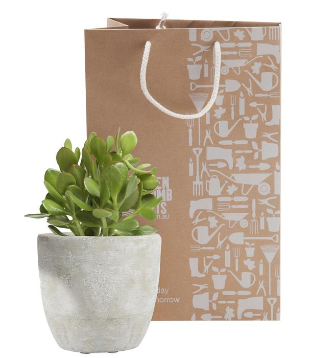 Money and Mortar Gift