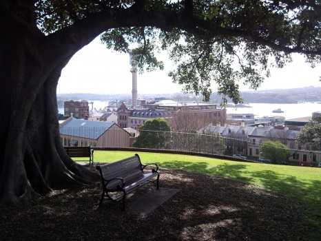Millers Point From Observatory Hill, Sydney