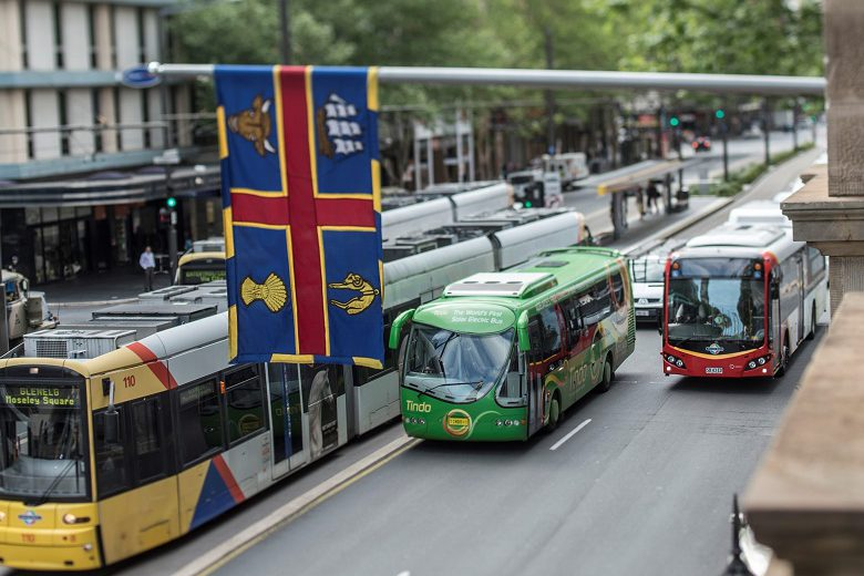 Councils can lead on sustainable transport: report