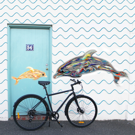 Dolphisn and the iamfree bicycle