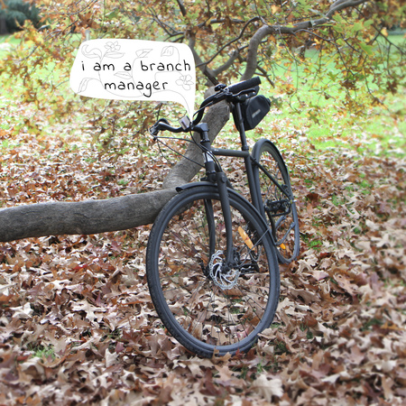 Bicycle and a tree branch manager