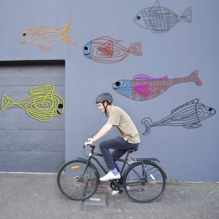 Dom cartoon fish and i am free bicycle