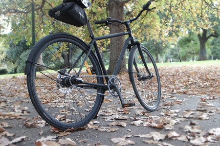 Bicycle in a park autumn day
