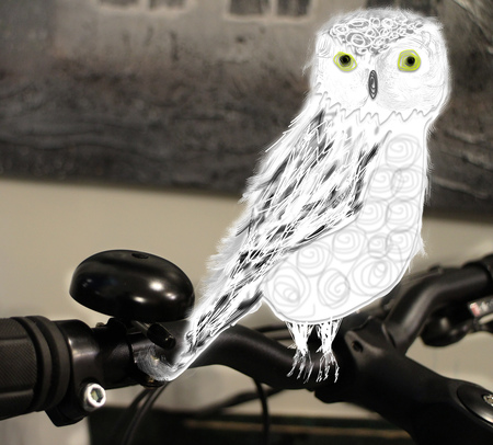 Owl one the bicycle handlebar design graphic