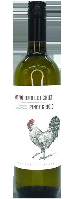 Cantina Tollo Nativo Terre di Chieti Abruzzo Pinot Grigio 2018