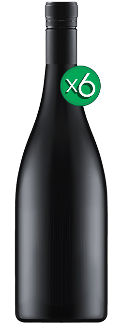 Icon Tasmanian Pinot Noir 2016 Cleanskin 6pack
