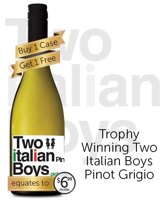 Two Italian Boys Pinot Grigio 2018
