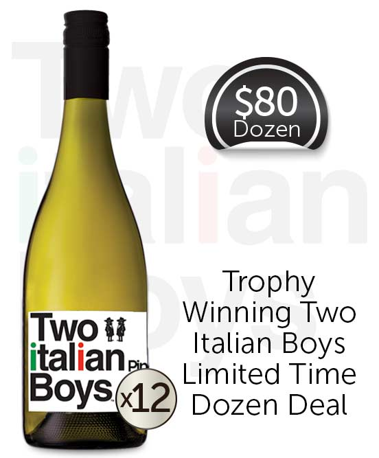 Two Italian Boys Pinot Grigio 2019 Dozen